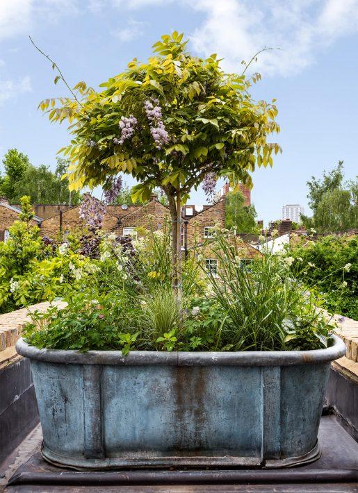 17.StudioIndigo_ListedTownhouse_garden